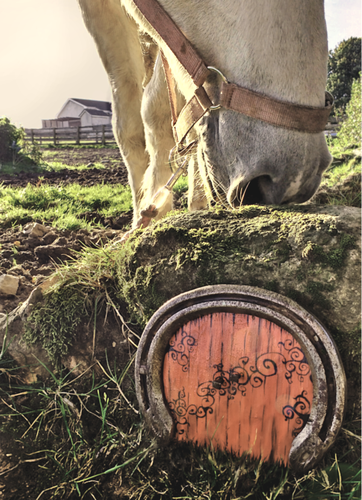 fairy door and horse in a field