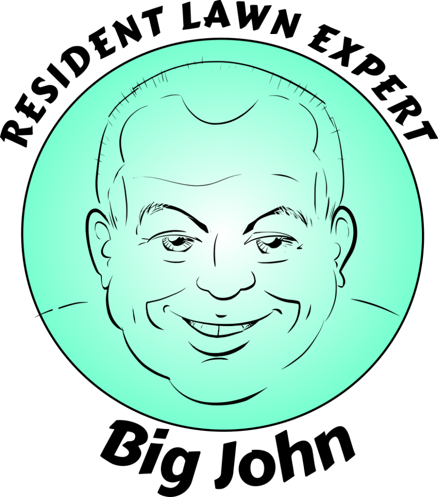 a caricature logo for a local business
